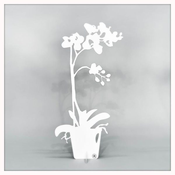 Orkidé - ETERNITY Dekoration 50cm