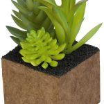 Plantmix